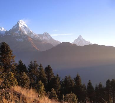 Short and Easy Ghorepani Poonhill Trek