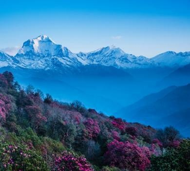 Ghorepani and Poon Hill Trek